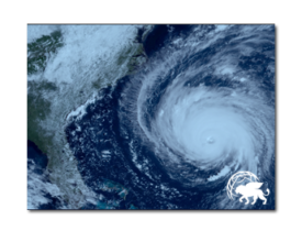 In The News: GlobalPro Offers Assistance to Policyholders Affected by Hurricane Florence